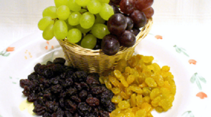 Dangers of Sultanas, Raisins and grapes for dogs